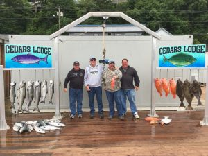 Halibut and Salmon fishing in Ketchikan Alaska