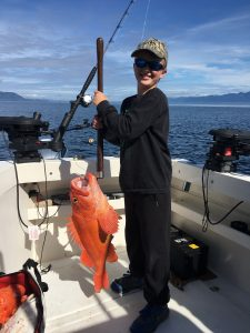 Yelloweye Rockfish ketchikan alaska