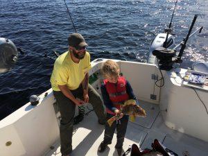 kelp greenling Ketchikan Alaska